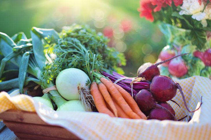 В Україні різко подешевшали картопля, морква і буряк: скільки коштує зварити борщ із сезонних овочів