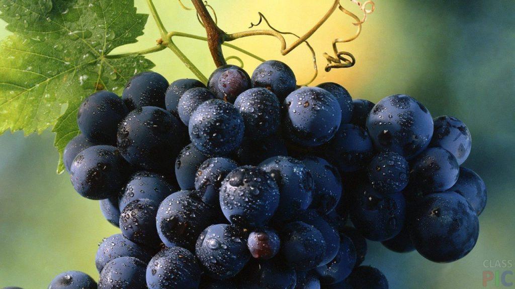 Может повторить судьбу арбузов: цены на виноград упали до убыточных