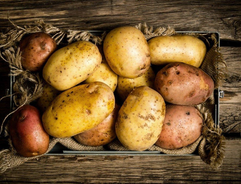 П'ять помилок зберігання картоплі, які роблять овоч небезпечним для здоров'я